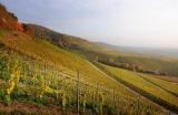Weinlagen am Schwanberg bei Iphofen